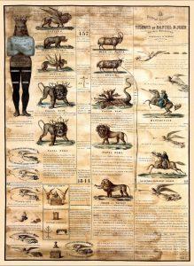 Prophetic Chart